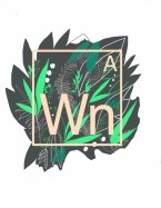 wondern awe green logo